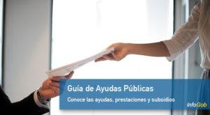 Guía de Ayudas Públicas