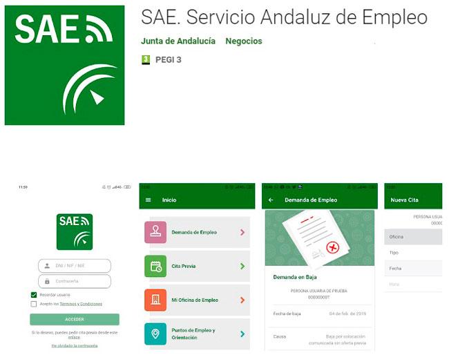 Aplicación del SAE
