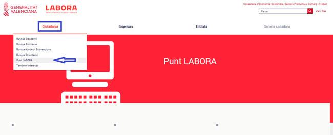 Acceder al servicio PuntLabora desde internet