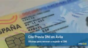 Cita DNI Ávila